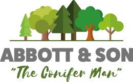 Abbot and Son Tree Surgeons